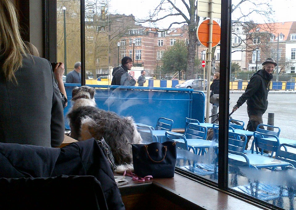 Café Belga - mysterious dog again