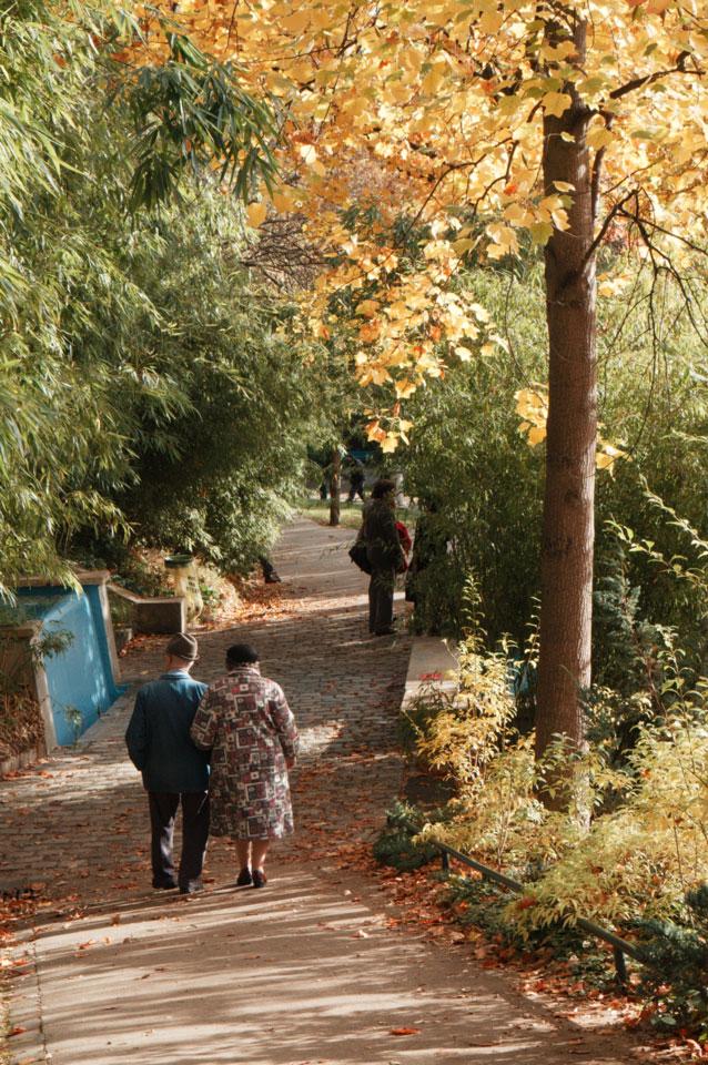 Le parc de Belleville39k64