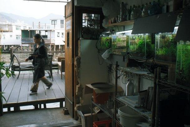 Solo Cafe @ 86 Kat Hing Front St 大澳吉慶街86號地下09tc4