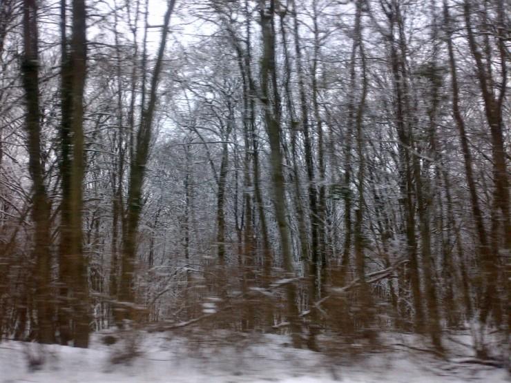 Villers-Allerand-20130226-00234