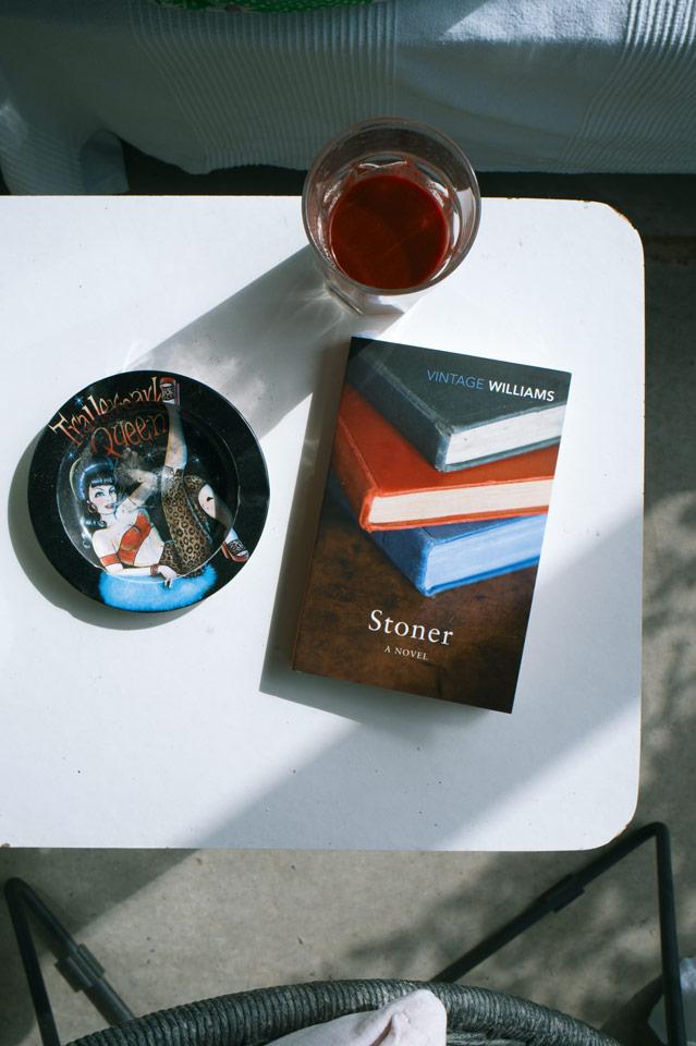 Stoner by John Williams03tc4