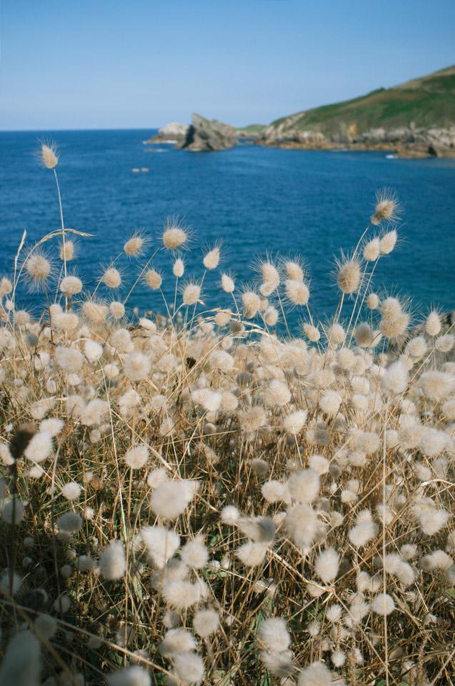 Playa de Torimbia09tc4