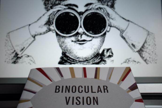 Edith Pearlman - Binocular Vision01v50
