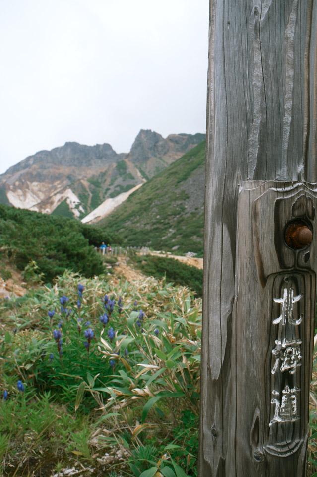 Daisetsuzan-National-Park-大雪山国立公園---Mt.-Furano-富良野岳04tc4