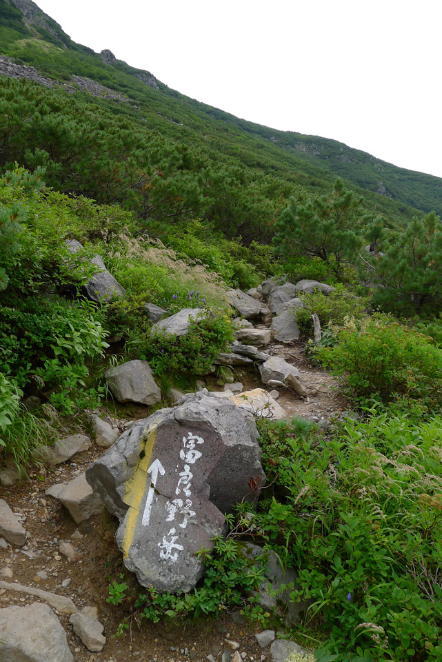 Daisetsuzan-National-Park-大雪山国立公園---Mt.-Furano-富良野岳25YJ