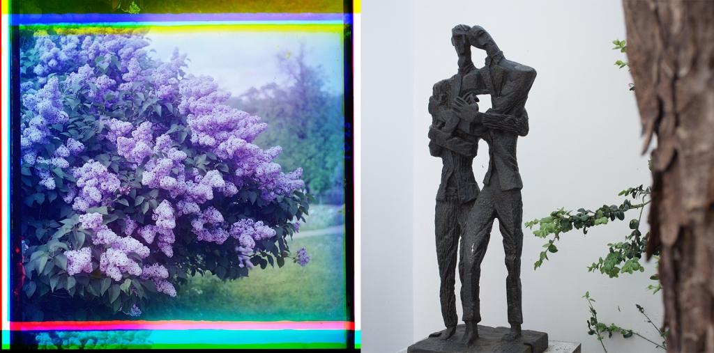 Lilacs + Projet de Monument aux frères Van Gogh