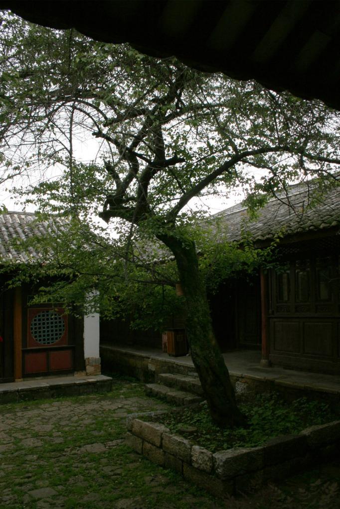 Ancient tea horse road museum c