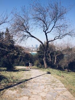 Kuzguncuk - Fethipasa Korusu park