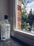 Original Bombay gin
