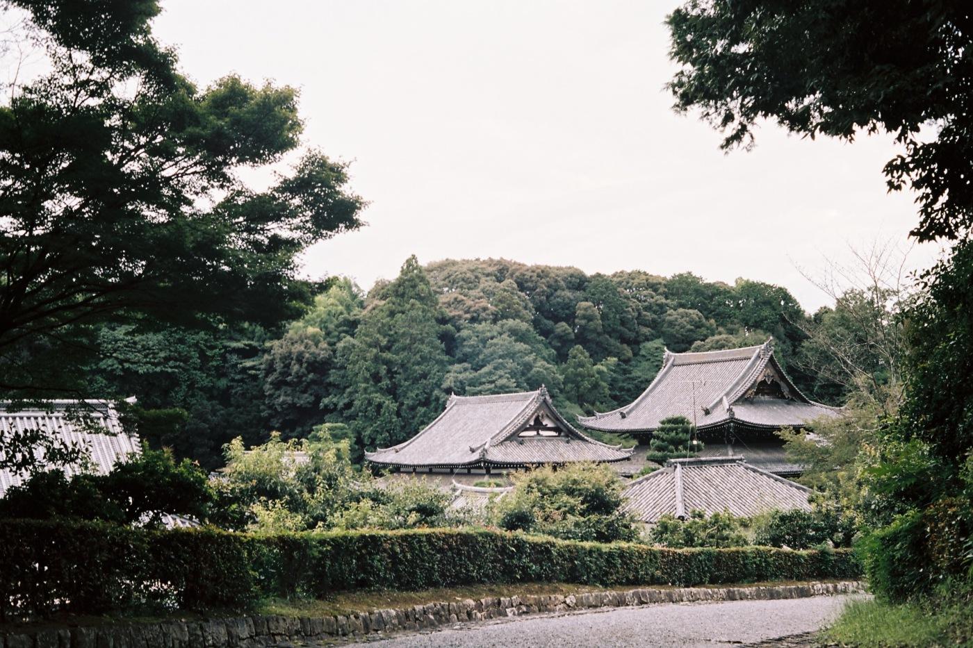 Sennyu-ji 泉涌寺