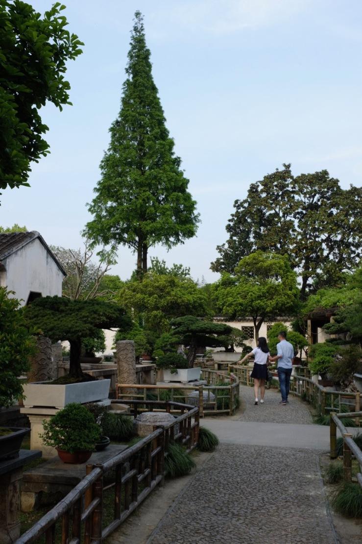 Lingering Garden 留园